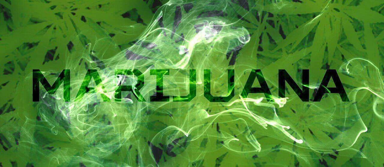 marijuana sign over leaves
