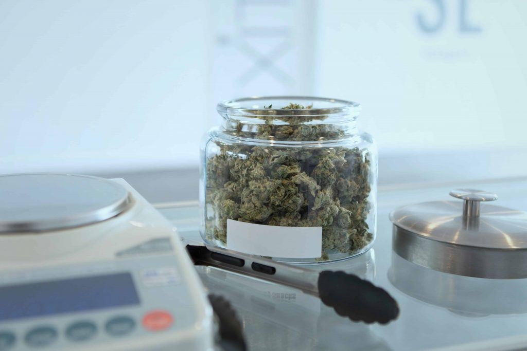 cannabis in a jar next to a scale