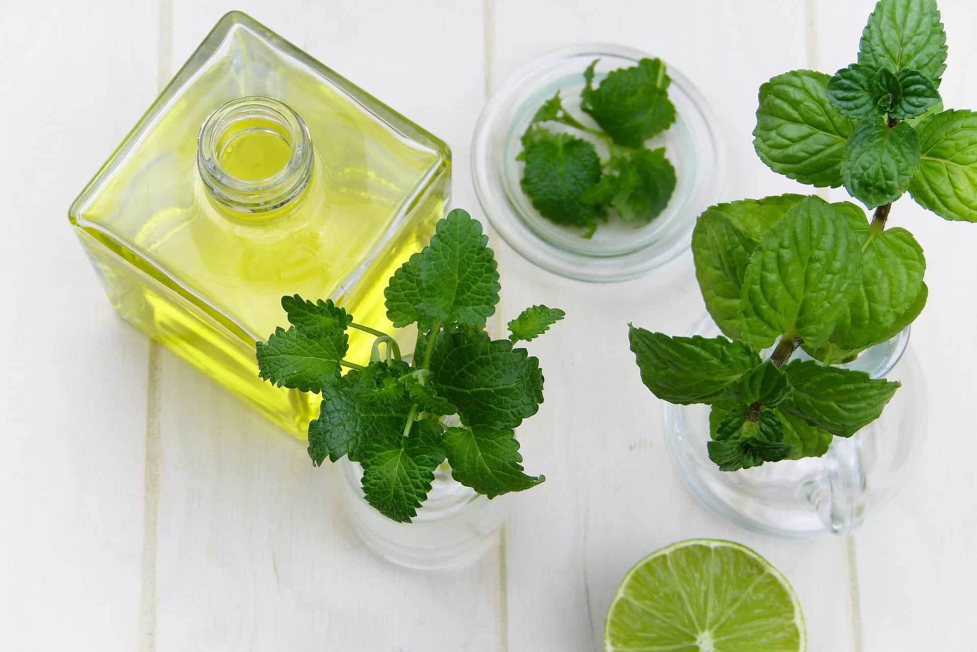mint leaves with lime on a table