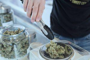 cannabis on a scale