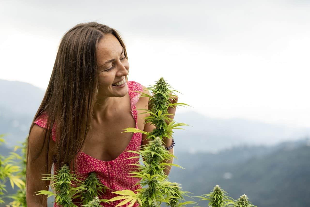 a woman admiring a cannabis plant