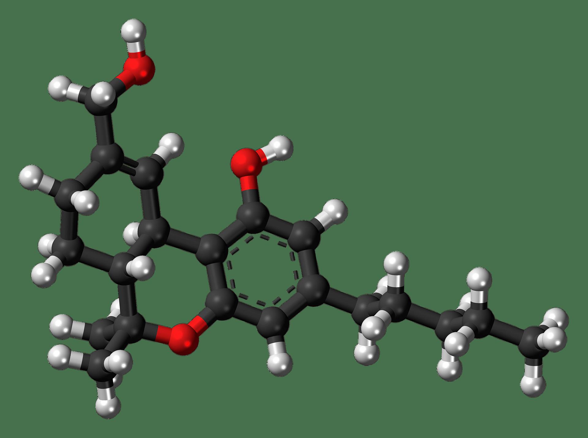 The Difference Between Delta 8 and Delta 9 Tetrahydrocannabinol